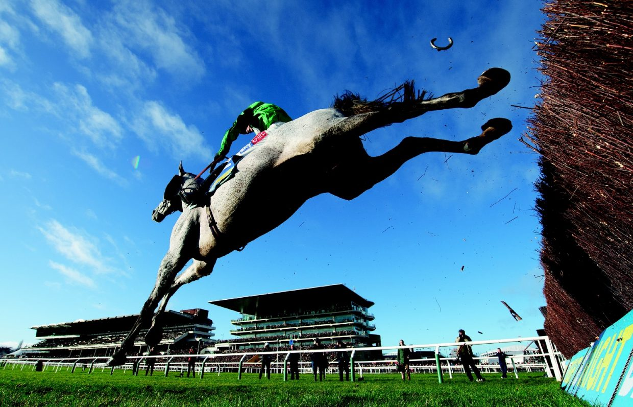 Call for former jockeys to take part in concussion study